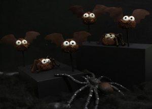 Fledermäuse und Spinnen